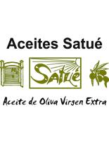 Logo Satue