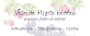 valle-de-pineta-berries